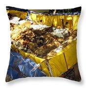 Cuban Refugee Boat 5 Throw Pillow