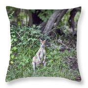 Curious V2 Throw Pillow