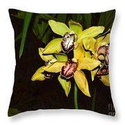 Dendrobium Orchid Throw Pillow