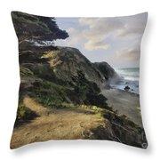 Cypress Path Impasto Throw Pillow