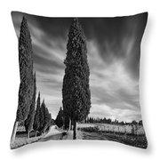 Cypress Trees- Tuscany Throw Pillow