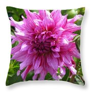 Dahlia Named Annette C Throw Pillow