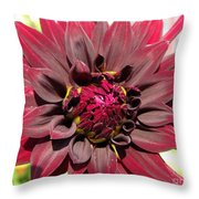 Dahlia Named Black Wizard Throw Pillow