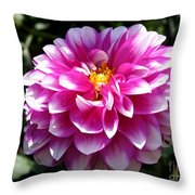 Dahlia Named Brian Ray Throw Pillow