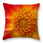 Dahlia Named Brian's Sun Throw Pillow
