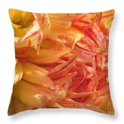 Dahlia Named Misty Explosion Throw Pillow
