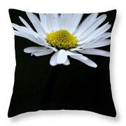 Daisy 1 Throw Pillow