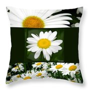Daisy Collage Throw Pillow