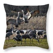 Dance Of The Cranes Throw Pillow