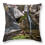 Darwin Falls Throw Pillow