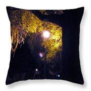 Davenport At Night Throw Pillow