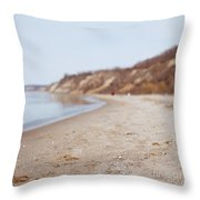 Day At The Beach II Throw Pillow