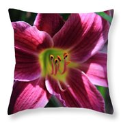 Day Lily 2 Throw Pillow