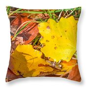 Dead Poplar Leaves Throw Pillow