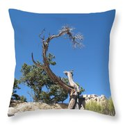 Dead Tree At Grand Canyon Throw Pillow