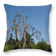 Dead Tree With Crow Throw Pillow
