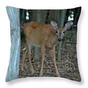 Deer 1 Throw Pillow