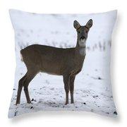 Deer In The Snow Netherlands Throw Pillow