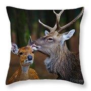 Deer Love Throw Pillow