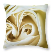 Detail Of Rose Flower Marrakech, Morocco Throw Pillow