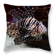 Devil Firefish Throw Pillow