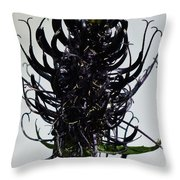 Devils Claw Flower Throw Pillow