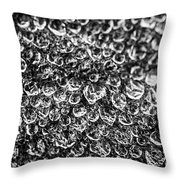 Dew Drops On Leaf Throw Pillow