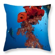 Diver Looks On At A Bright Red Soft Throw Pillow
