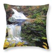 Doanes Falls In Autumn Throw Pillow
