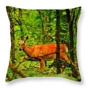 Doe On The Move Throw Pillow