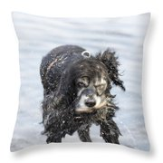 Dog Shake Throw Pillow