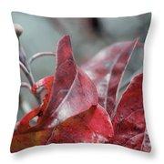 Dogwood  Autumn Throw Pillow