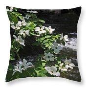 Dogwoods In Yosemite Throw Pillow