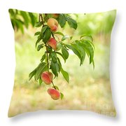 Donut Peaches Throw Pillow