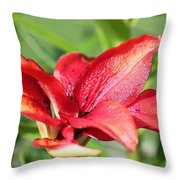 Double Asiatic Lily Named Cocktail Twins Throw Pillow