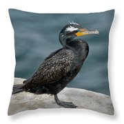 Double-crested Cormorant Throw Pillow