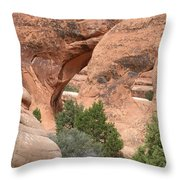 Double O Arch Throw Pillow