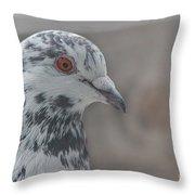 Dove Pigeon Throw Pillow