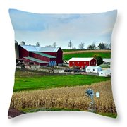 Down On The Farm Throw Pillow by Frozen in Time Fine Art Photography