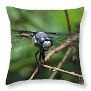 Dragonfly 71 Throw Pillow