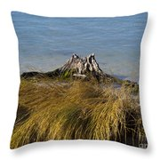 Driftwood In Beach Grass Throw Pillow