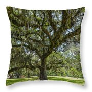 Dripping With Spanish Moss Throw Pillow