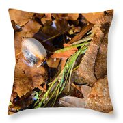 Dry Acorn And Oak Leaves Throw Pillow