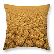 Dry Cracked Earth Throw Pillow