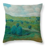 Dry Hills Throw Pillow