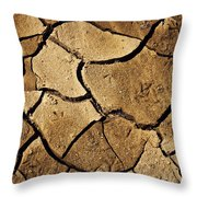 Dry Land Throw Pillow by Carlos Caetano