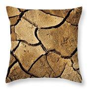 Dry Land Throw Pillow