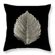 Dry Leaf 1 Throw Pillow
