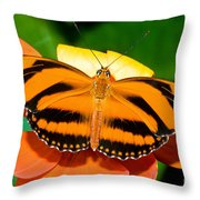 Dryadula Butterfly Throw Pillow