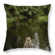 Dugout Canoe In Blackwater Stream Throw Pillow